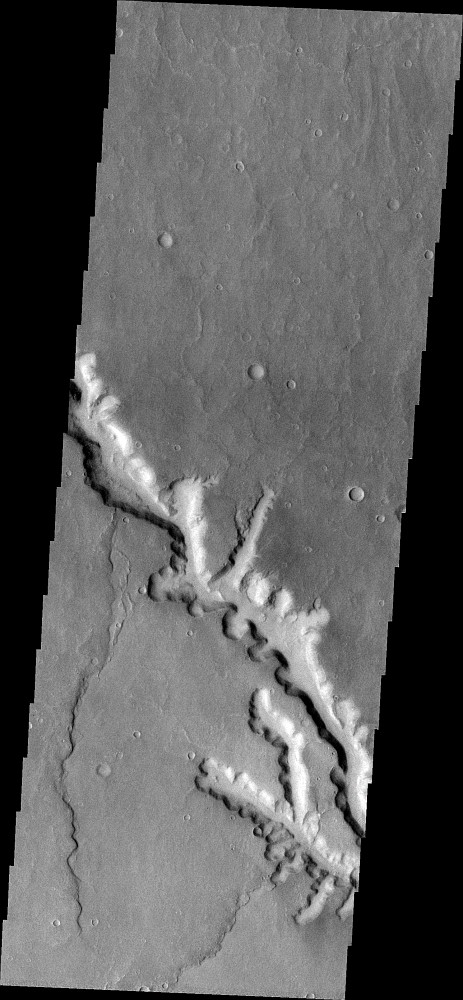 20090619a