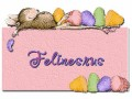 Felinesrus-gailz0406-HM_Asst Sheet.jpg