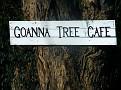 Goanna Tree Cafe