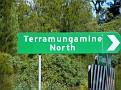Terramungamine