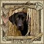 dcd-Love, Mom-In The Hay