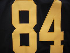 A-Steelers84-rushblack05