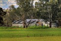 Solar panels near Mumbil 031011 002