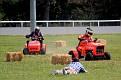 Lawn Mower mayhem 009