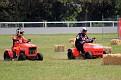 Lawn Mower mayhem 011