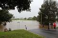 Lower George Street crossing flooded 030312 1109 am 003