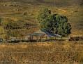 Freemantle Road Farm 003 001