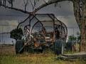 Tooraweena buggy