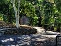 Brisbane Botanic Gardens 024