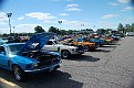Mustangs Cobras 009