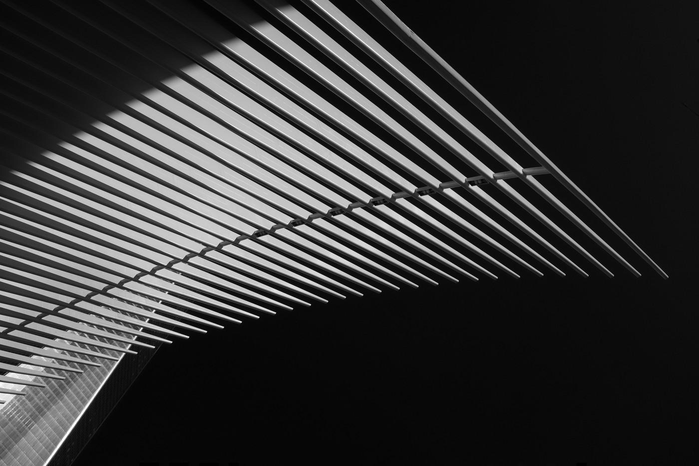 Oculus Wing