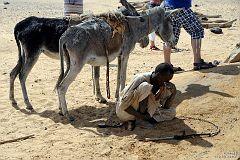 Osły, które ciągną linę z bukłakami z wodą