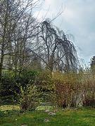 Am Schlossgraben