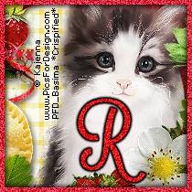 Rochelle2179AUC-vi