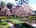 Ponds & walkways at Maclay Gardens