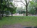 Central Park, NY.