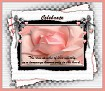 Celebrate-gailz-pink rose