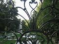 Gardens 391