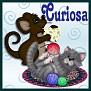 cat&mousecuriosa.jpg