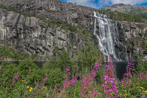 Waterfall with fireweed on the foreground
