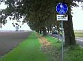 Ökologischer Radweg!