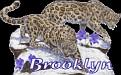 Brooklyn Big Cats2