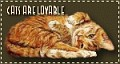 blkcats3