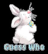 Guess Who - HippityHoppityBunny