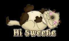 Hi Sweetie - KittySitUps