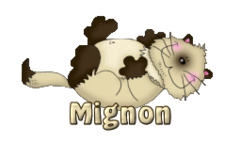 Mignon - KittySitUps