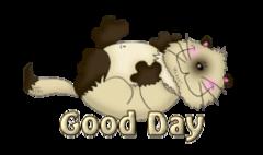Good Day - KittySitUps