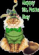 HappySt Pat-St PatsKitty-Sandra
