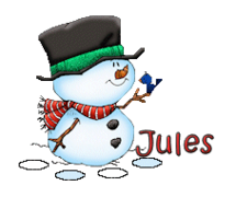 Jules - Snowman&Bird