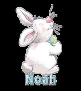 Noah - HippityHoppityBunny