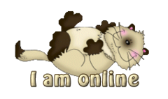I am onliine - KittySitUps