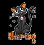Sharing - HalloweenKittySitting