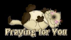 Praying for You - KittySitUps