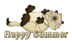 Happy Summer - KittySitUps