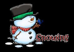 Snowing - Snowman&Bird
