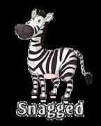 Snagged - DancingZebra