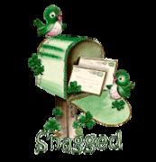 Snagged - StPatrickMailbox16