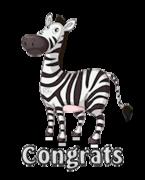 Congrats - DancingZebra