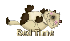 Bed Time - KittySitUps