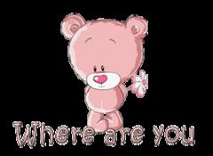 Where are you - ShyTeddy