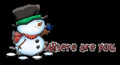 Where are you - Snowman&Bird