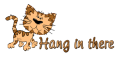 Hang in there - CuteCatWalking