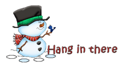 Hang in there - Snowman&Bird
