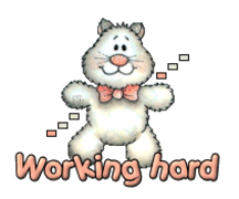 Working hard - HuggingKitten NL16