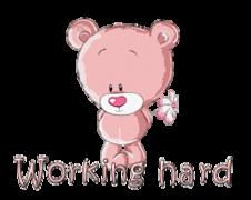 Working hard - ShyTeddy