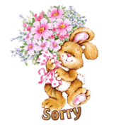 Sorry - BunnyWithFlowers